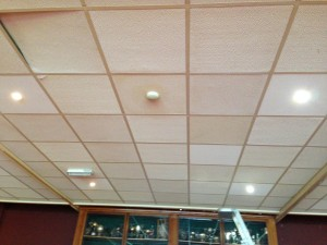 LED lights installed in the main pavilion.